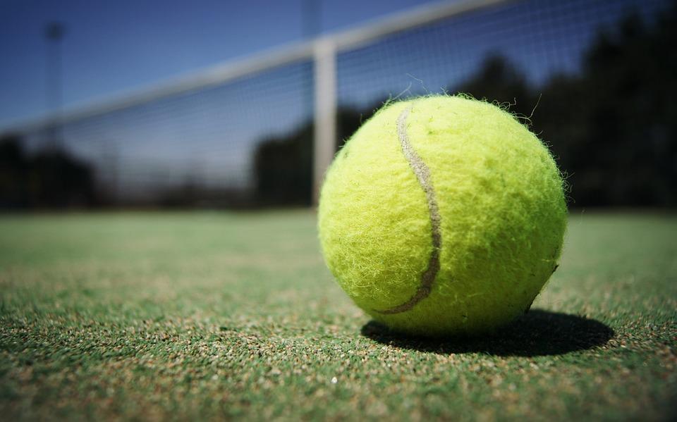 tennis-ball-984611_960_720.jpg